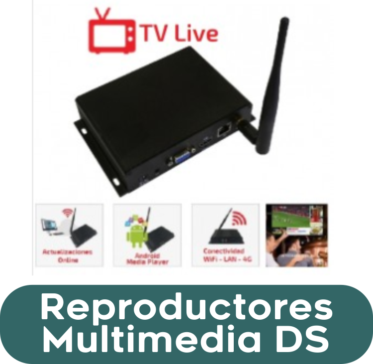Reproductores Multimedia DS